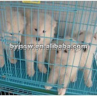 Breeding Cage Dog for Sale Cheap