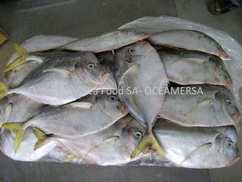 Moonfish selene peruviana buy frozen moonfish product for Opah fish price