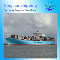 Shipping Sea Freight From China to South America (Brazil/Argentina/Uruguay/Chile) -Shipping