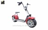 Harly folding balance scooter for adult