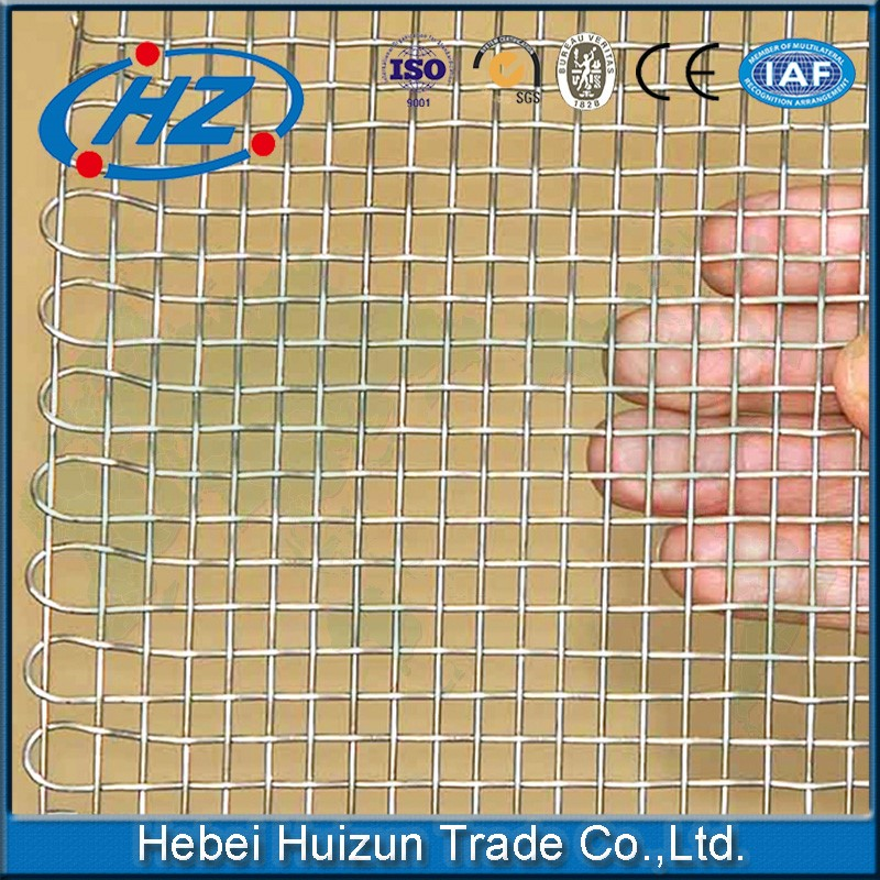 500 micron 1X1 stainless steel woven bird cage wire <strong>mesh</strong>