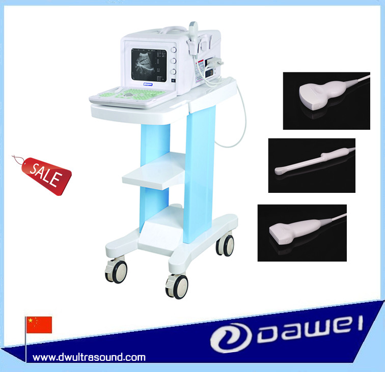 CE Ultrasound scanning device for human body and veterinary with DW330 full digital ultrasound scanner