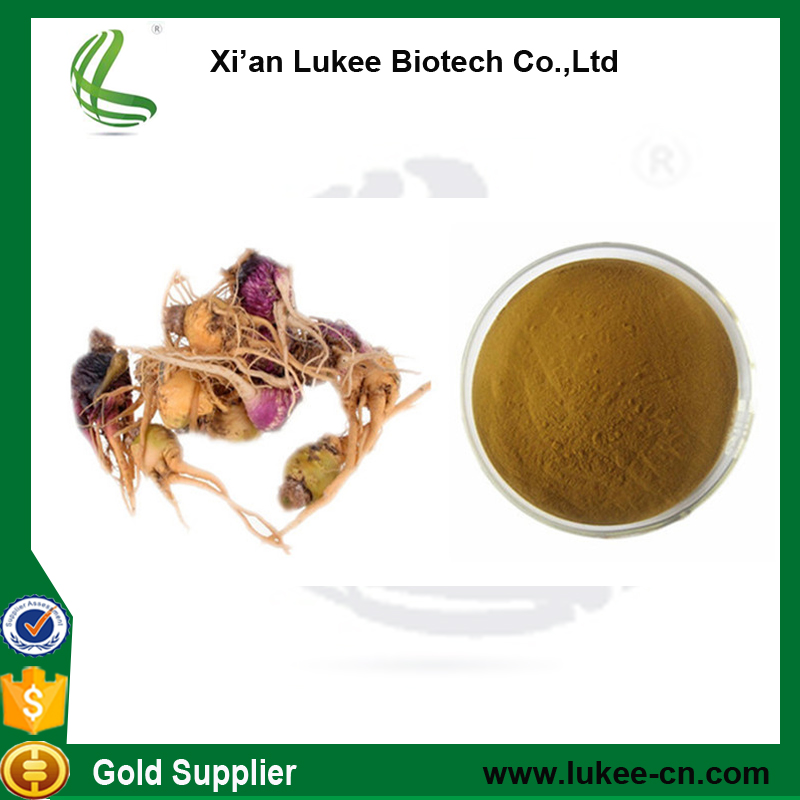 High Quality Maca root extract as black maca for men sexual/ maca powder sex tonic for men