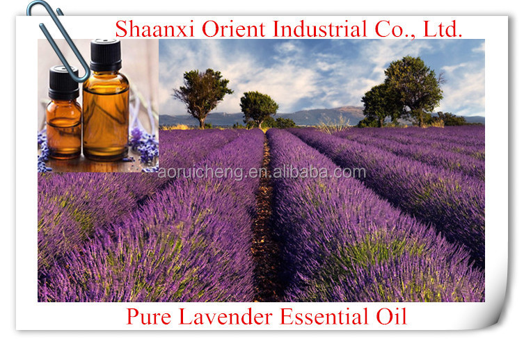 100% Natural & pure bulk lavender essential oil with superior quality, essential oil bulk