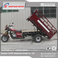 Popular 3 wheel cargo tricycle 200cc water-cooled 4 seat 3wheel enclosed motorcycl with Dumper