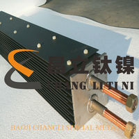 ruthenium-iridium titanium anode electrode for sodium hypochlorate generator