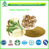 GMP Factory Supply Organic Radix Isatidis Extract P.E.