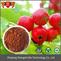 Pure natural hawthorn fruit extract treating heart disease for wholesale