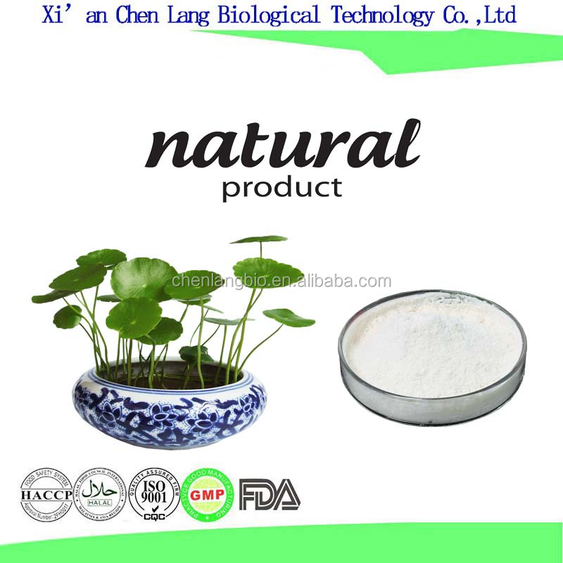 Fresh and Natural Gotu Kola Extract Powder for Cosmetics Facial Mask
