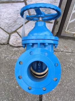 Wedge Gate Valve (Oval Body) for Sugar Mill Application