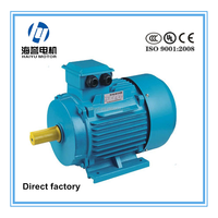 IEC standard and customized Y2 series deep freezer motor