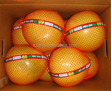 2015 crop Fresh Honey Pomelo pack 15kg Fruit Carton Box