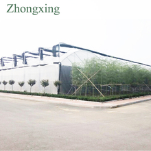 plastic film greenhouse outside cover with PO film from Zhongxing greenhouse