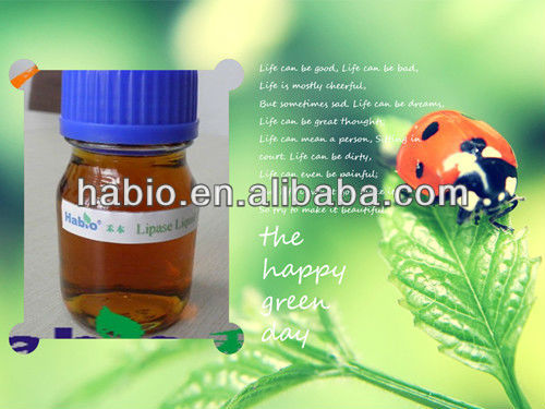Biodiesel Specialized Enzyme Lipase Activated