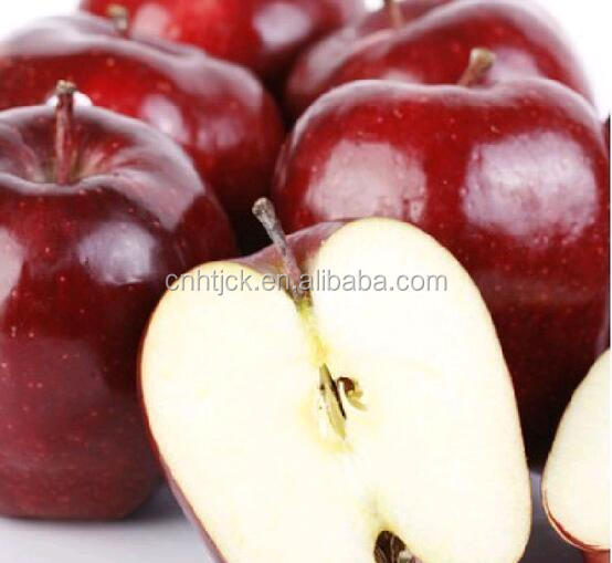 Red Color Fresh Apple Red Delicious Apple
