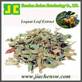 Natural Loquat Leaf Extract