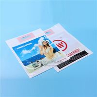Custom Large Size Gravure Printed Die Cut Handle PE Plastic Bag with Printing