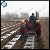 Best selling Potato sowing machinery for planting potatoes