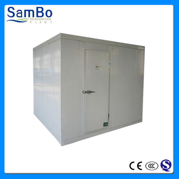 Customized deep walk-in freezer frozen cold room for meat and fish