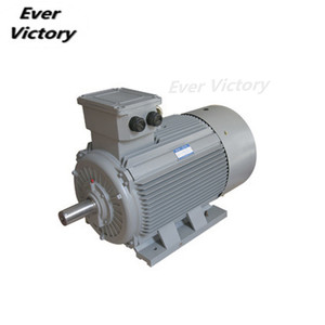 High Torque Low Rpm Small Powerful AC Three Phase Electric Motors