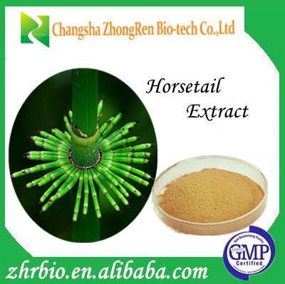 Horsetail extract/Organic Silicon 7% by UV