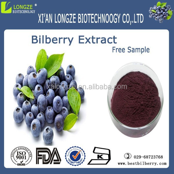 Free sample bilberry extract powder from fresh bilberry