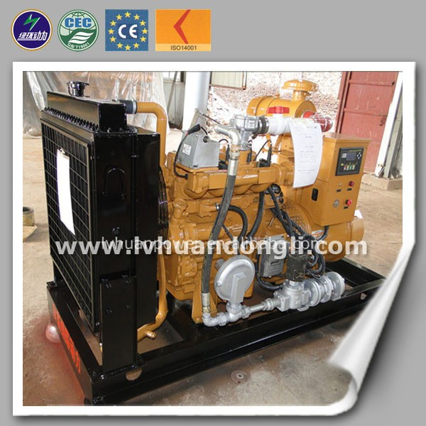 Best price mini generator Chicken manure biogas plant manure from animal waste