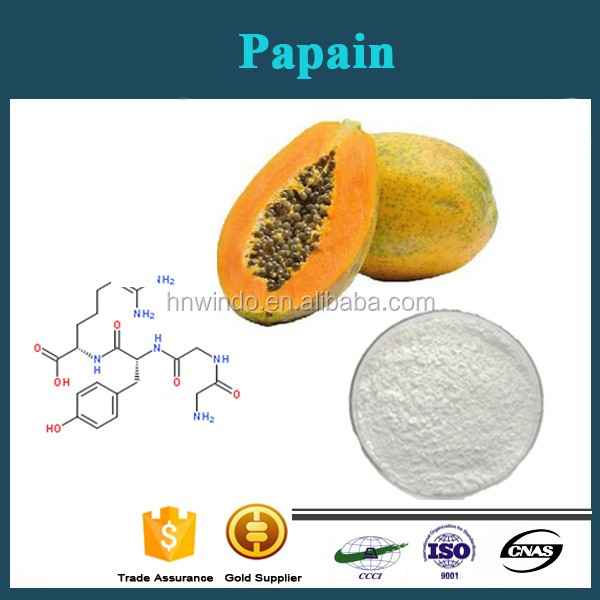 Natural Plant Enzyme Papain/Papaya Extract/CAS NO.:9001-73-4