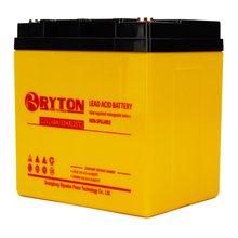 RYTON Power long life professional battery 24a 12 for 96 volt solar power generator system