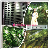 Indoor Decoration Vertical Green Wall For