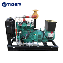 CE approved hot sale green power 20kw bio gas generator