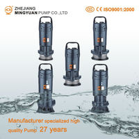 Manufacturer 27 years Clean and Sewage Water Submersible Pump
