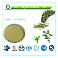 Hot Sale GMP Certificate 100% Pure Natural Green Tea Extract in Tea Extract