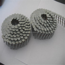 Hot sale! wire coil siding nail/wire holding nails/common wire nail
