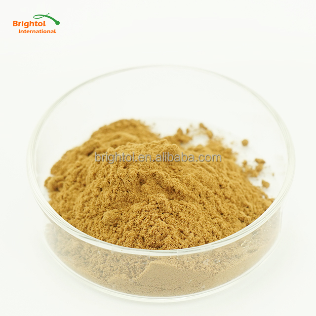 Ginkgo extract,Ginkgo Biloba extract