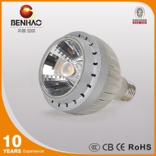 30W Dimmable PAR30 led spot lighting with CE