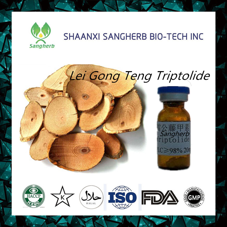Thunder God Vine Extract Tripterine 98% Anti-cancer Tripterine High Quality 34157-83-0 Tripterine
