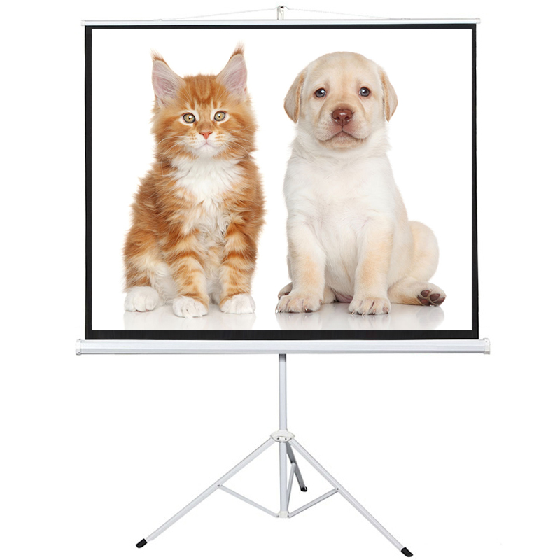 Floor Standing Tripod Projector Screen