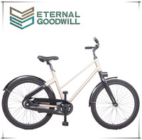 The latest product automatic 2 speeds 28 inch bike/bicycle for family used EB 5012