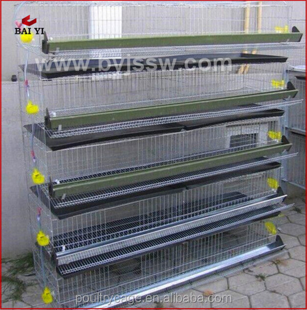 New Design Commercial Layer Wire Mesh Quail Cage For South Africa(H & A type,wholesale,fast delivery,Made in China)