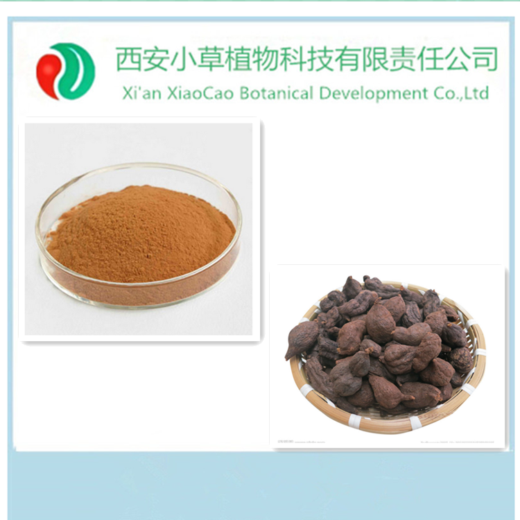 Professinal Manufacturer supply THSG,TSG,Tuber Fleeceflower Root Extract,polygonum multiflorum plant extract