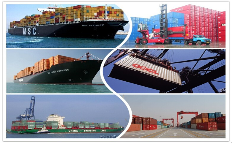 Sea freight forwarder price from Shenzhen/Guangzhou to Sutter Arabia ---sandy