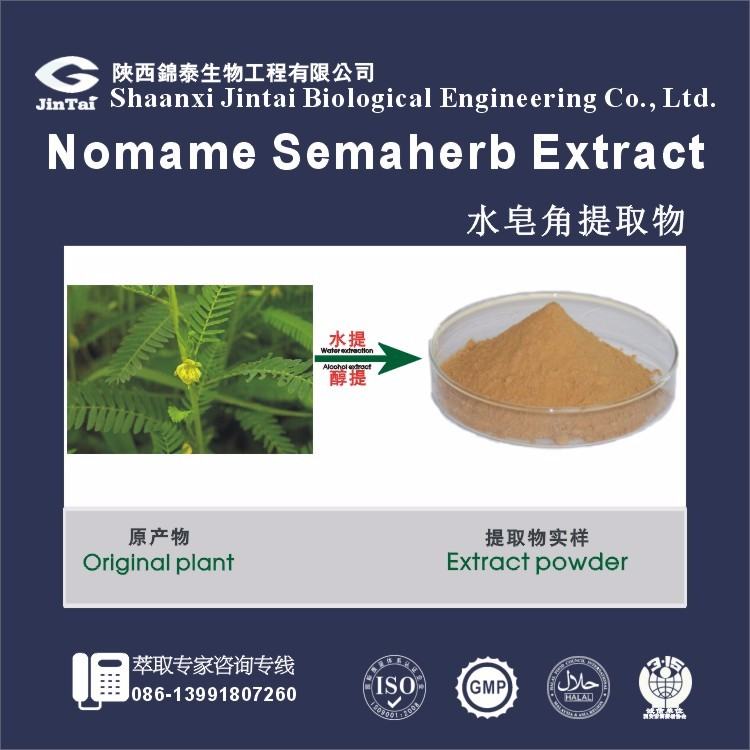 Popular product Nomame Semaherb Extract Cassia Nomame (sieb.) L. Kitagawa