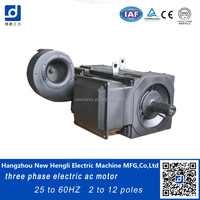 NHL China best brand squirrel cage 200kw ac induction motor