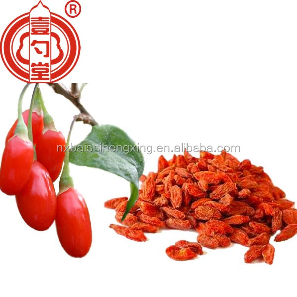 Direct selling low pesticide dried goji berry dry fruit Ningxia goji berry