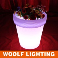 Decoration Home Garden Illuminated LED Light
