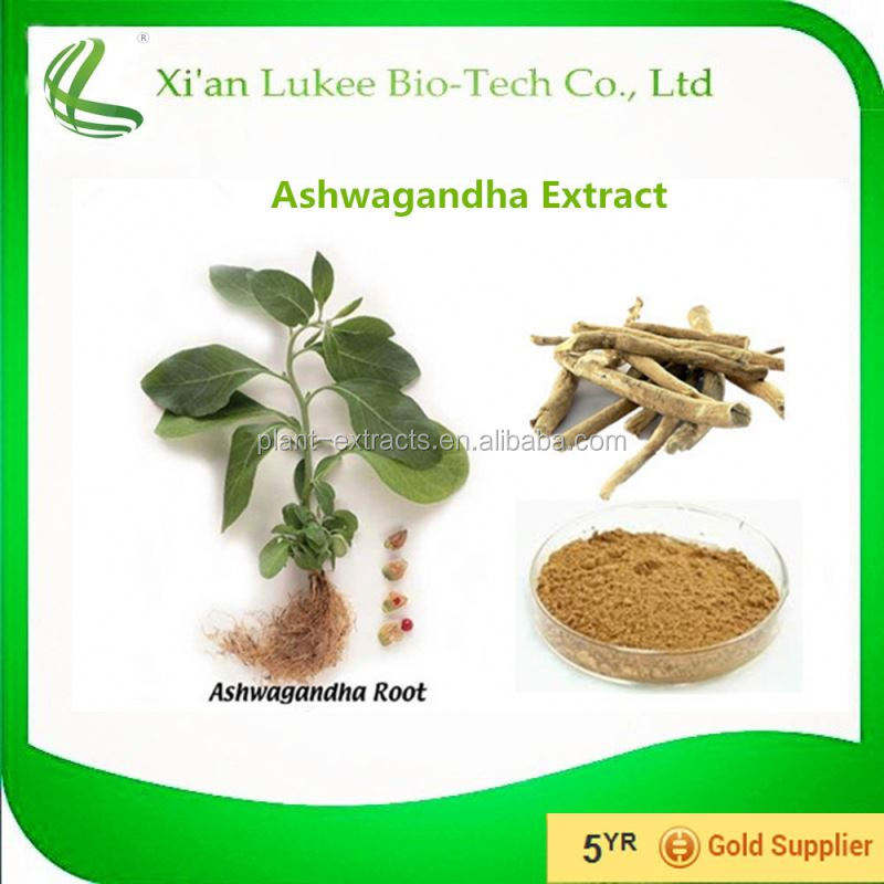 Raw herb powder Indian Ginseng / Ashwagandha powder