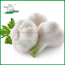 China fresh garlic/Natural garlic/Garlic market price