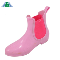 User Friendly Design Plastic Ladies Cheap
