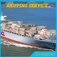 Cheap sea freight agent from China to Italy--Mina